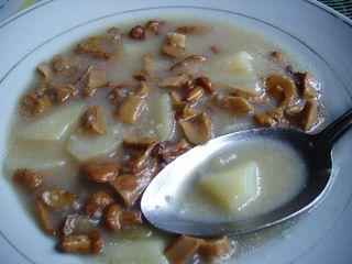 Chantarelle soup